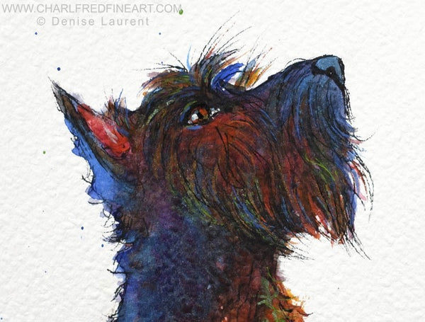 Whisky Scottie highland terrier dog animal art by Denise Laurent.