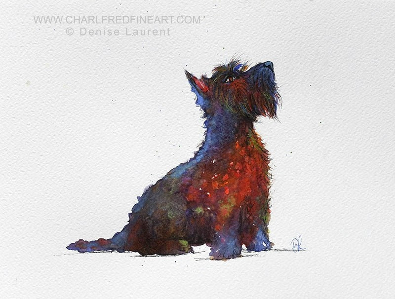 Whisky Scottish highland terrier dog animal art by Denise Laurent.