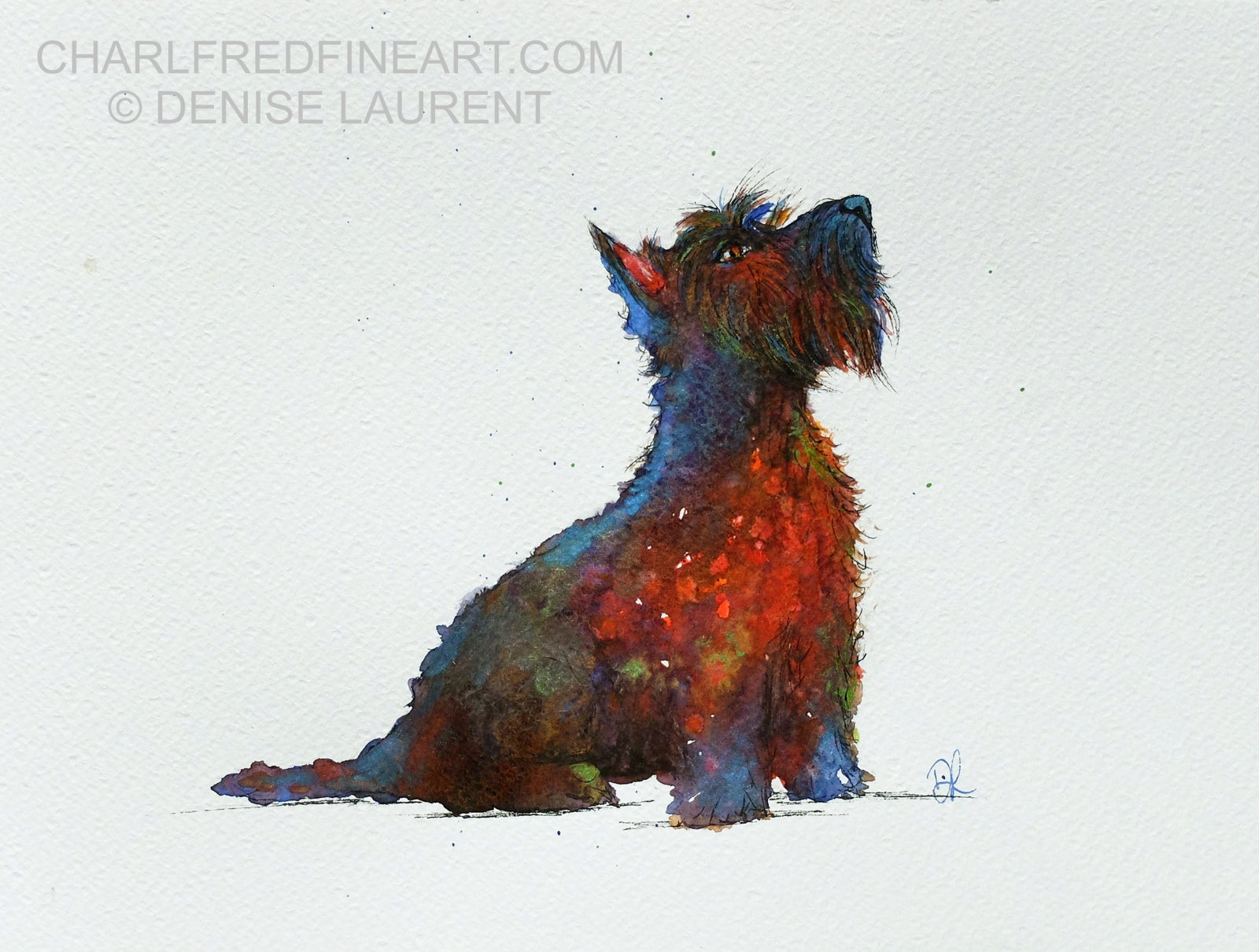 'Whisky' Scottish Black Terrier- Watercolour Painting