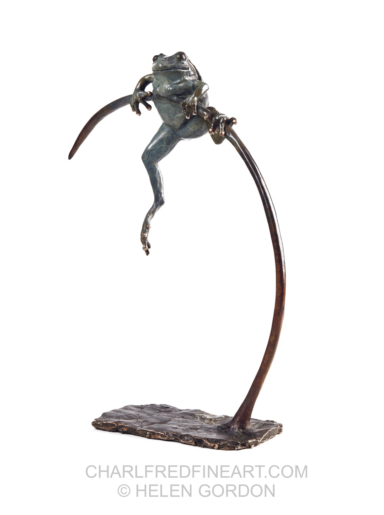 'Jeremiah' Frog- Bronze Edition Sculpture