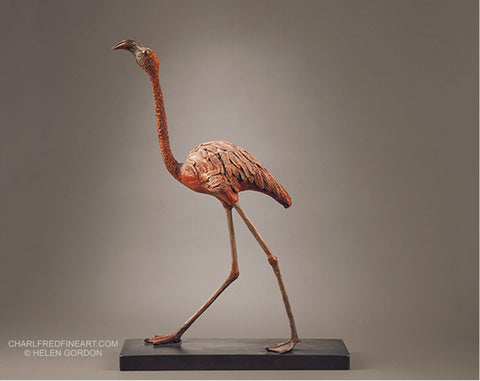 Flamingo - Helen Gordon