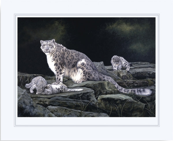 Keeping Watch snow leopard and kittens big cat wildlife art print artist Jacqueline Gaylard.
