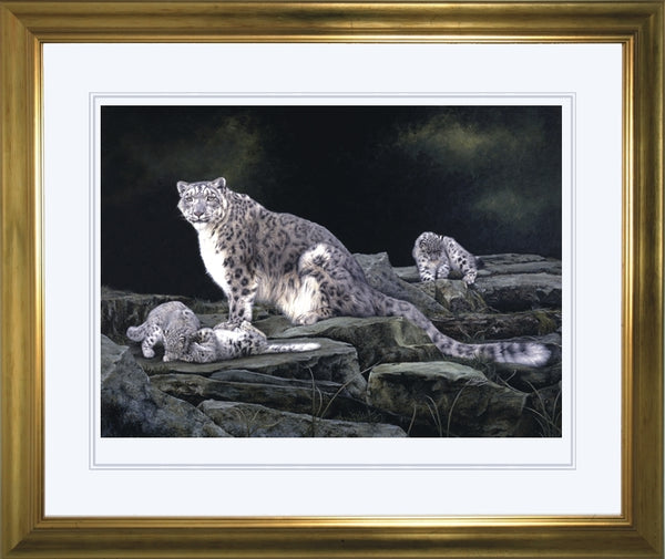 Keeping Watch snow leopard and kittens big cat wildlife art print framed artist J. Gaylard.