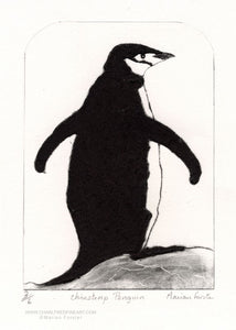 Chinstrap penguin wildlife art print by Marian Forster.