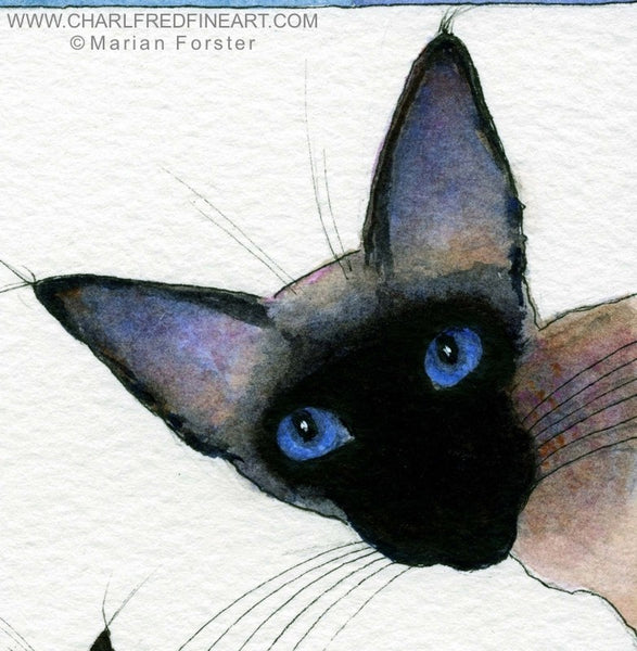 Love Siamese Seal Point cat animal art by Marian Forster.