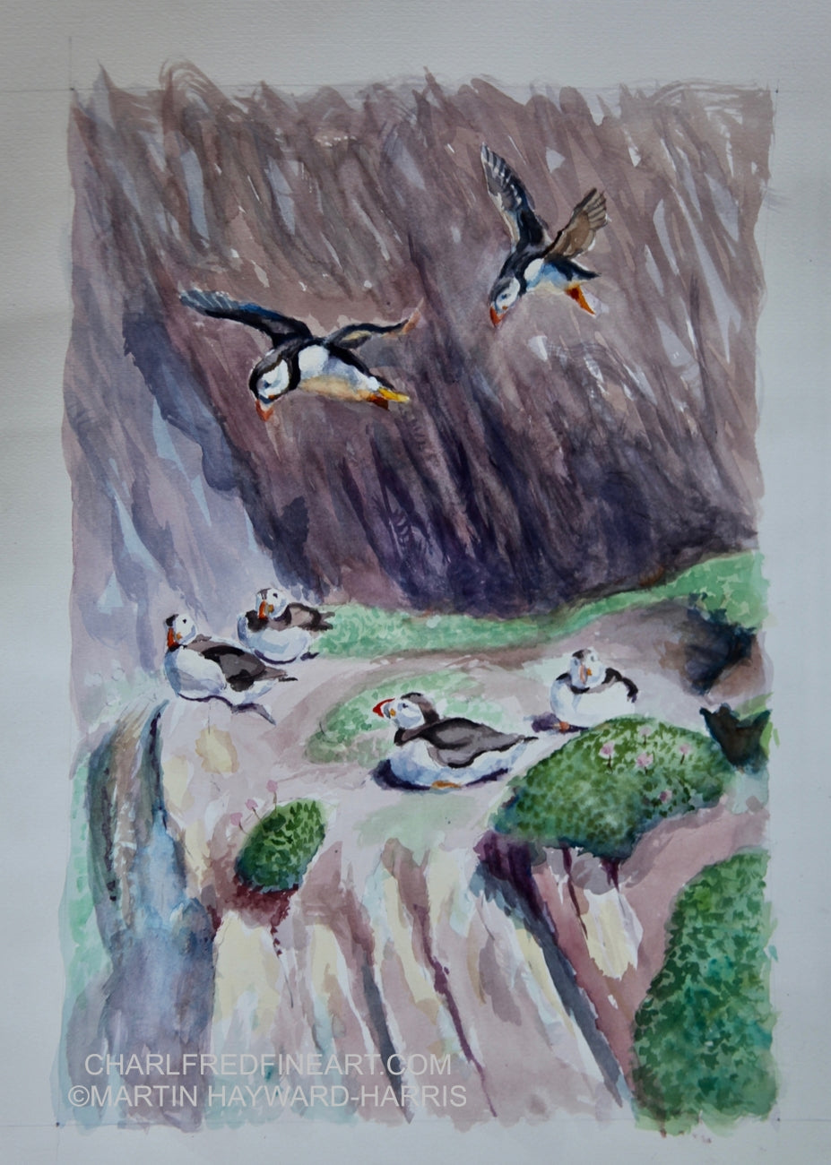'Puffin Helipad' - Bird Painting