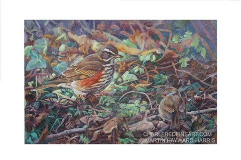 'Redwing and Robin' - Bird Painting