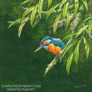 'Kingfisher & Willow' - Acrylic Painting