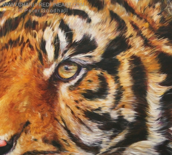 Bengal Prince Tiger animal wall art painting detail by Peter Goodhall.