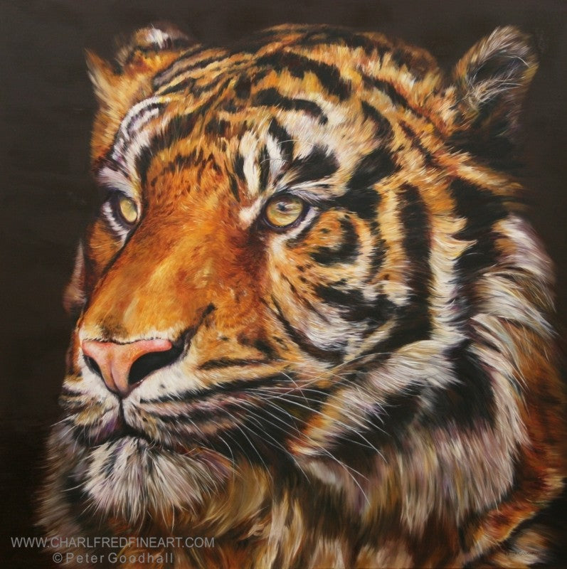 Bengal Prince Tiger animal wall art painting by Peter Goodhall.