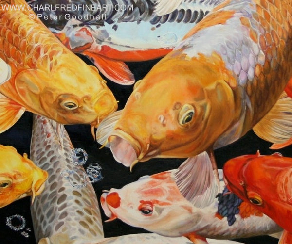 Koi Anticipation IX ornamental carp fish animal art painting by Peter Goodhall.