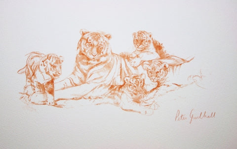 Watch with Mother Tiger with Cubs wildlife art print by Peter Goodhall.