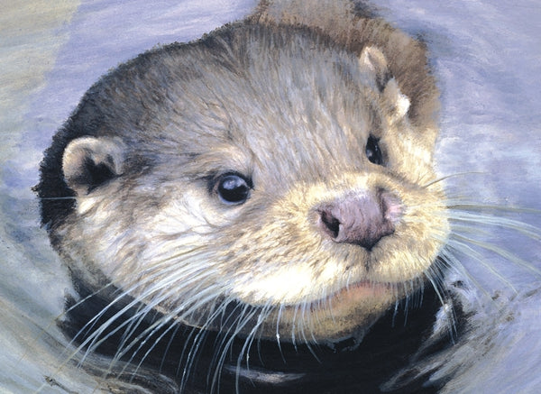Quick Dip otter wildlife art print detail animal art artist Jacqueline Gaylard