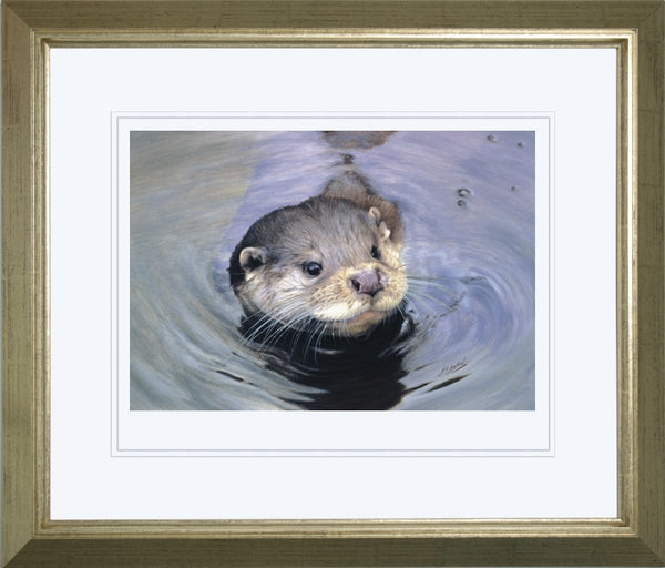 Quick Dip otter wildlife art print framed animal art artist J. Gaylard