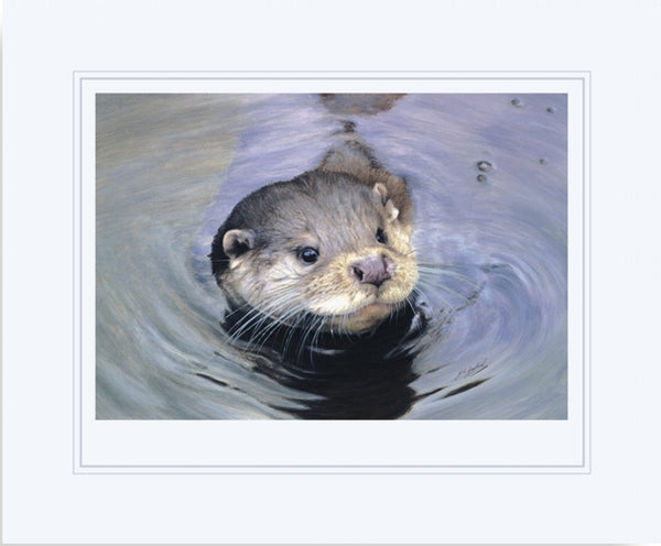 Quick Dip otter wildlife art print mounted animal art artist J. Gaylard