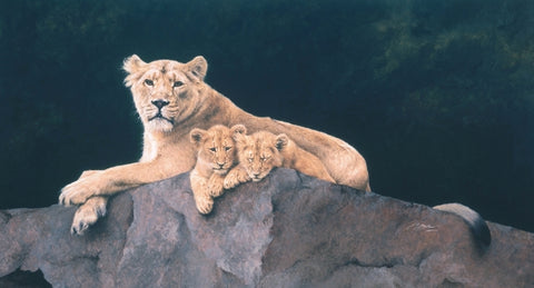 Watchful Asiatic Lioness with cubs wildlife art print animal art cat artist J. Gaylard