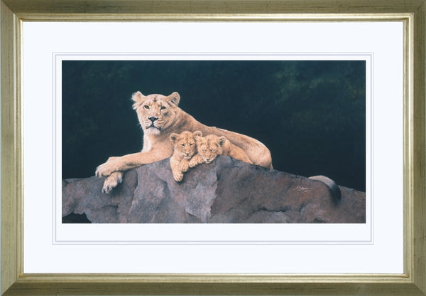 Watchful Asiatic Lioness with cubs wildlife art print framed animal art cat artist J. Gaylard