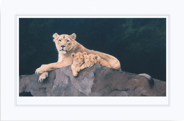 Watchful Asiatic Lioness with cubs wildlife art print mounted animal art cat artist J. Gaylard