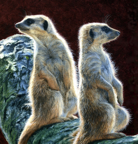 Who Goes There? Meerkats acrylic animal art painting detail wildlife artist Jacqueline Gaylard.