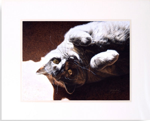 A Ray Of Sunshine British Shorthair Blue cat art painting J. Gaylard.