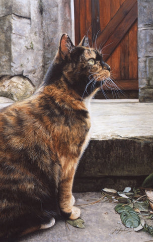 Captivating tabby tortoiseshell cat art painting, artist Jacqueline Gaylard.