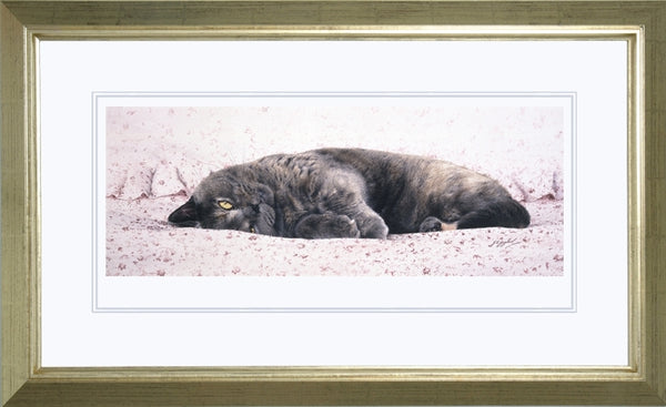 Chintz British Shorthair Blue Cream grey cat art print, framed, J. Gaylard.