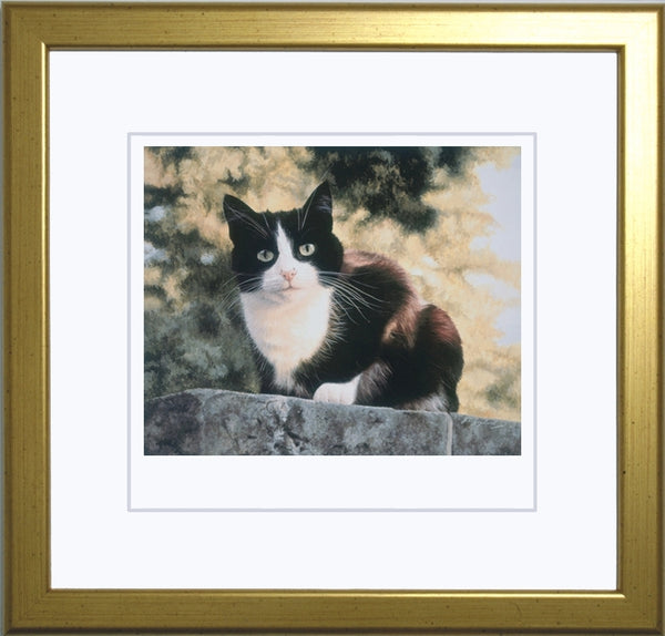Jess black and white tuxedo cat art print, framed, artist Jacqueline Gaylard.