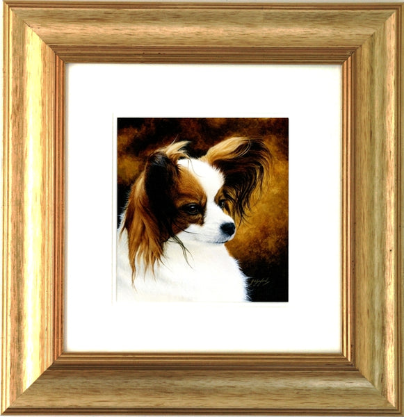 Lady Papillon toy spaniel dog, framed animal art, artist Jacqueline Gaylard.