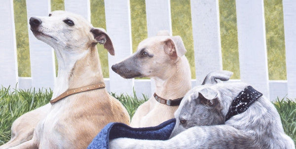 Three Whippets dogs animal art painting detail, artist Jacqueline Gaylard.