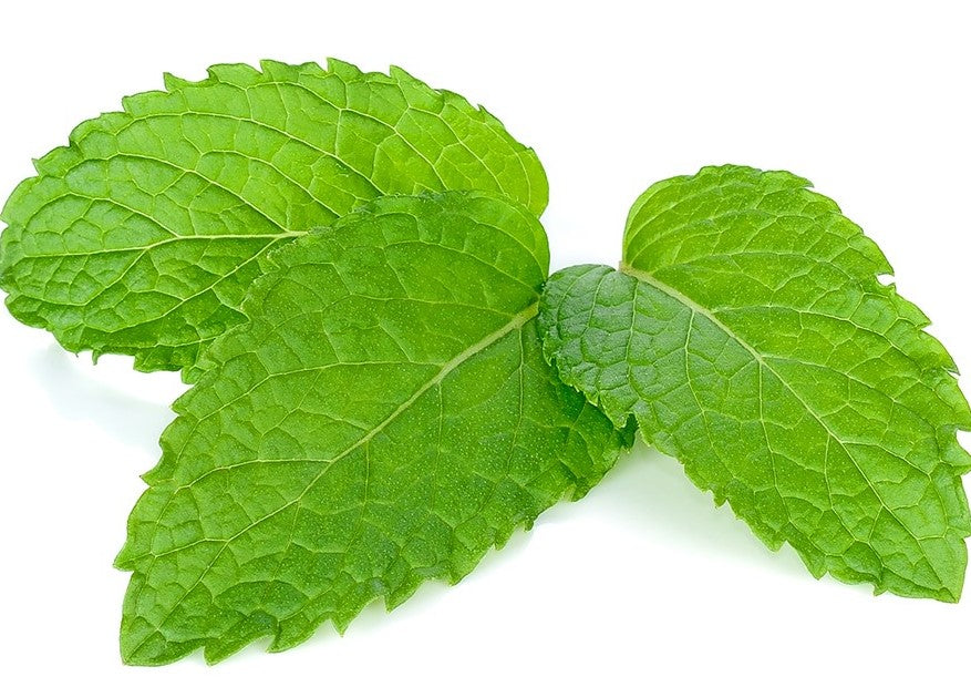 Mint for IBS and stomach pain