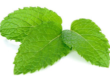 Mint helps IBS and indigestion