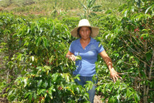 Load image into Gallery viewer, Colombian  - Women Coffee Producers