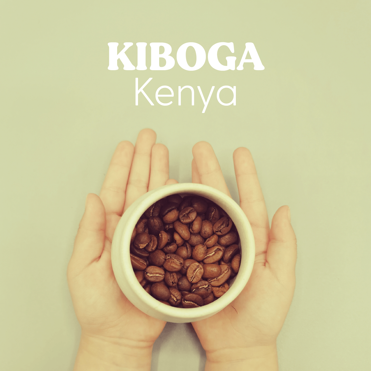 Kiboga - Hayuco Coffee Roasters