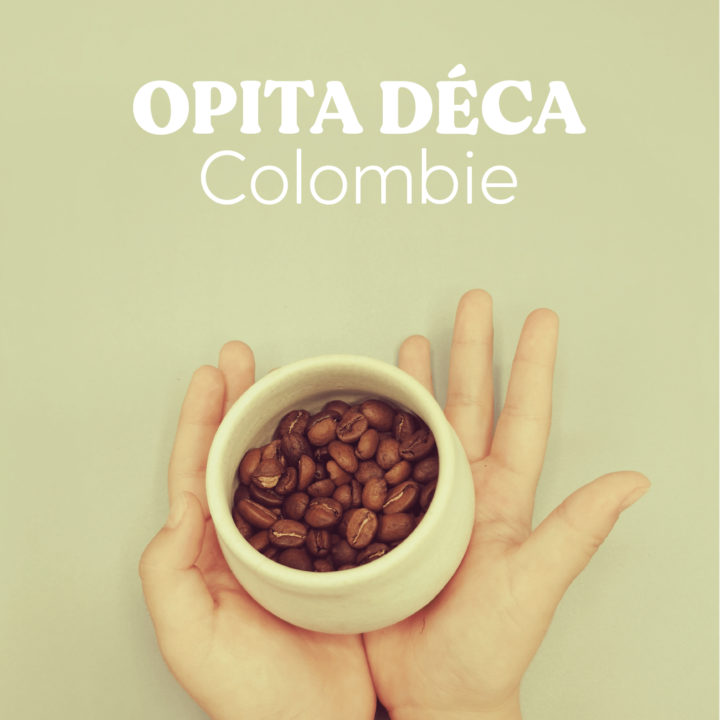 Opita Low Caffeine - Hayuco Coffee Roasters