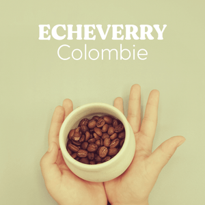 Echeverry - Hayuco Coffee Roasters