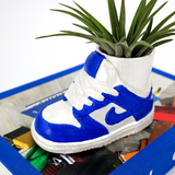 Kentucky Dunk SneakerPots