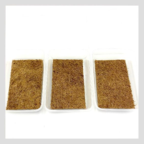 UrbanSproutz Coco Beds - the best medium to grow Microgreens on. Made of sustainably farmed coconut coir. Also known as coco coir mats. Fully compostable, making it clean, easy and sustainable for you to grow Microgreens on! Pre-cut to fit takeaway containers.