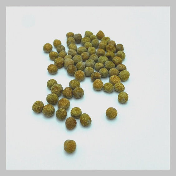 Organic Maple Pea Microgreens  Seeds from UrbanSproutz. Speckled Pea