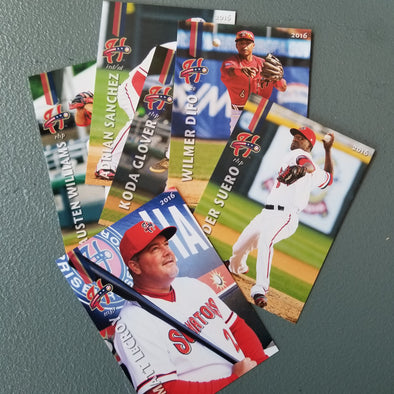 Harrisburg Senators 2016 Harrisburg Senators Team Set