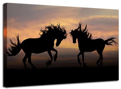 Tableau cheval photo