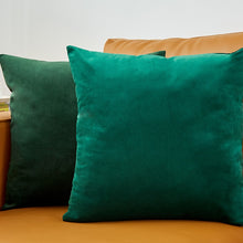 Load image into Gallery viewer, Velvet Pillows Cover