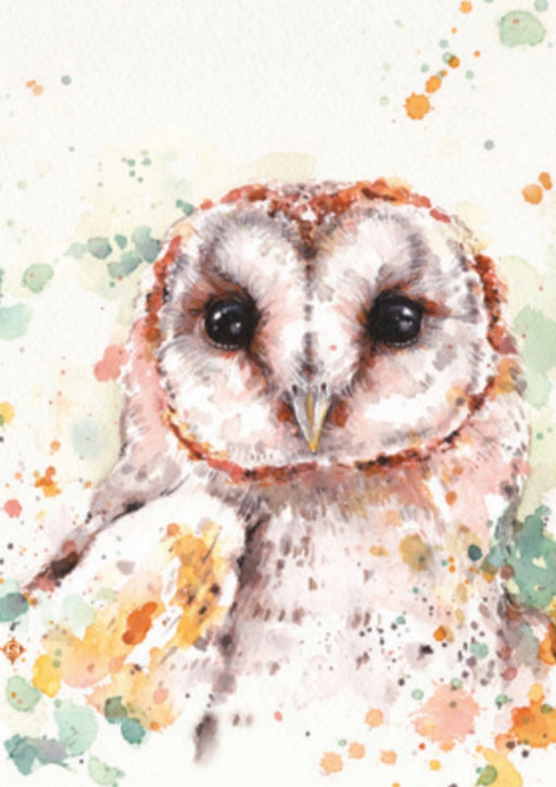 Sillier Than Sally - A4 Print - Portrait - Barn Owl