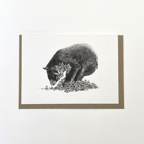 Marini Ferlazzo Greeting Card - Black Bear Ursula's Dream