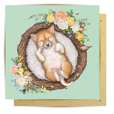 La La Land Greeting Card Nested Baby Dingo