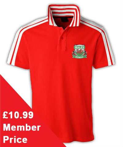 Wales 6aside Polo