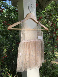 Glittery Star Mesh Jumper Twirl Dress