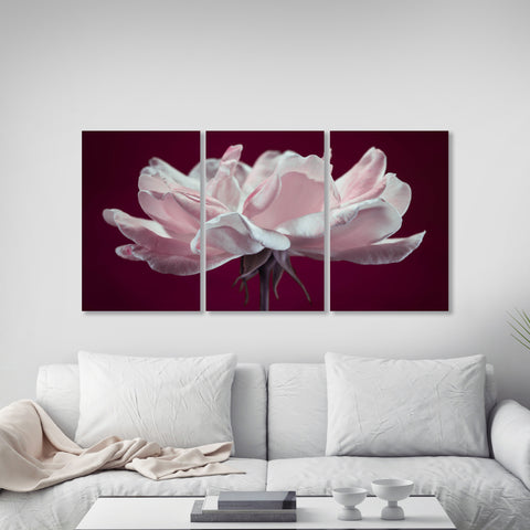 Delicate Rose Three Panel Canvas