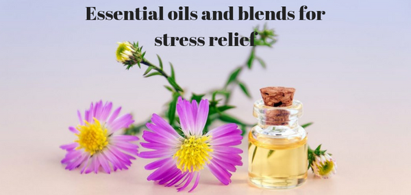 ESSENTIAL OILS AND BLENDS FOR STRESS RELIEF