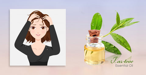 Tea tree oil for dandruff's