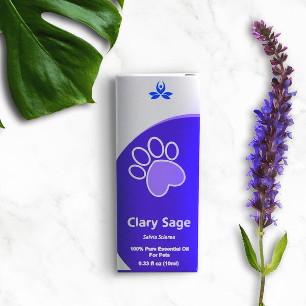 Clary sage Essential oil for Pets